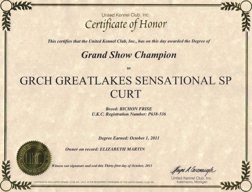 Great lakes bichon frisethe guys ukc grand champion certificate yadclub Choice Image